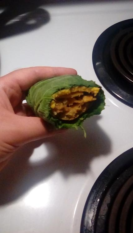 Half-eaten chimichanga wrapped in wilted chilacayote squash leaves.