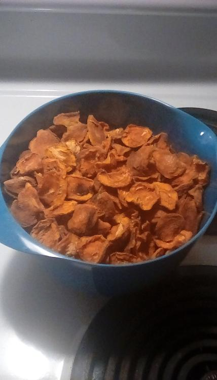 Dried apricot halves in a blue melamine bowl. July 2020.