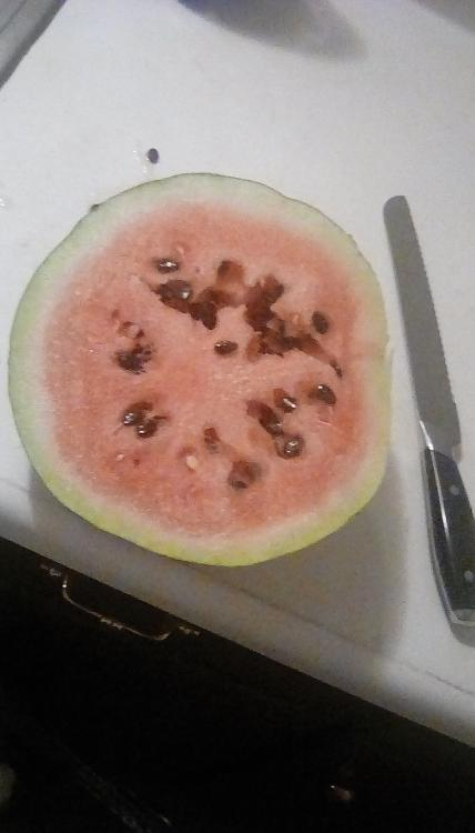 Sliced Corner Round watermelon on a countertop next to a large bread knife. The fruit has red flesh, and dark seeds.