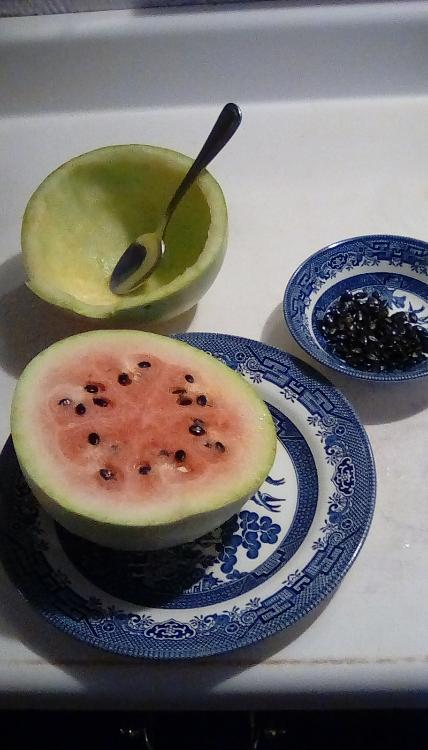 Half of a Navajo Winter watermelon, with a thick, but sweet rind, on a plate. Behind it is an empty rind of the same fruit with a spoon in it; a small bowl containing glistening black seeds from that half of the fruit is next to it. The uneaten half of the fruit has red flesh.